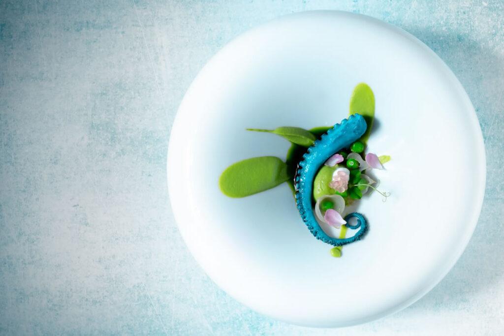collaborazioni - martina tenz - polpo blu