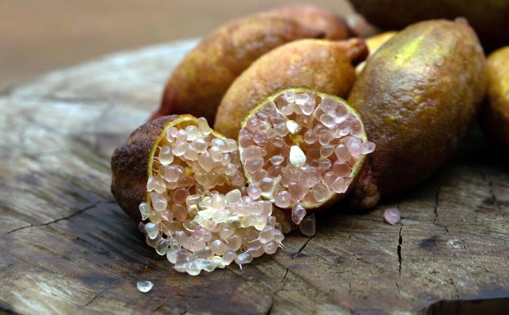 i nostri limoni - finger lime - judy's everbearing - dettaglio