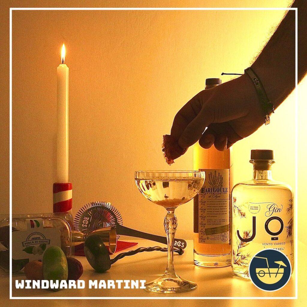 collaorazioni - simone de luca - windward martini