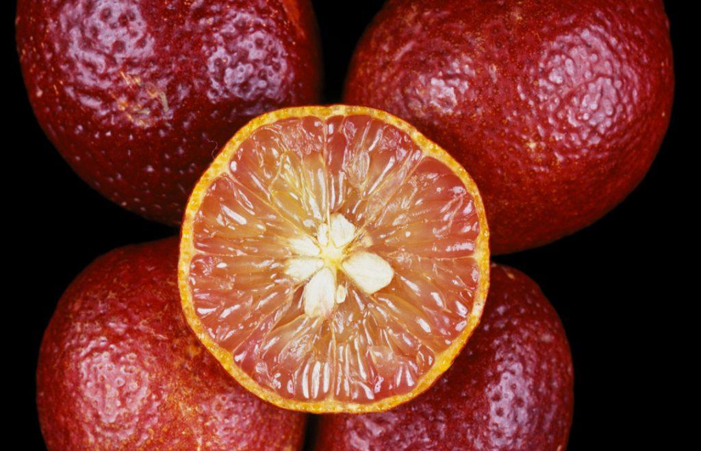 i nostri limoni - red lime - dettaglio